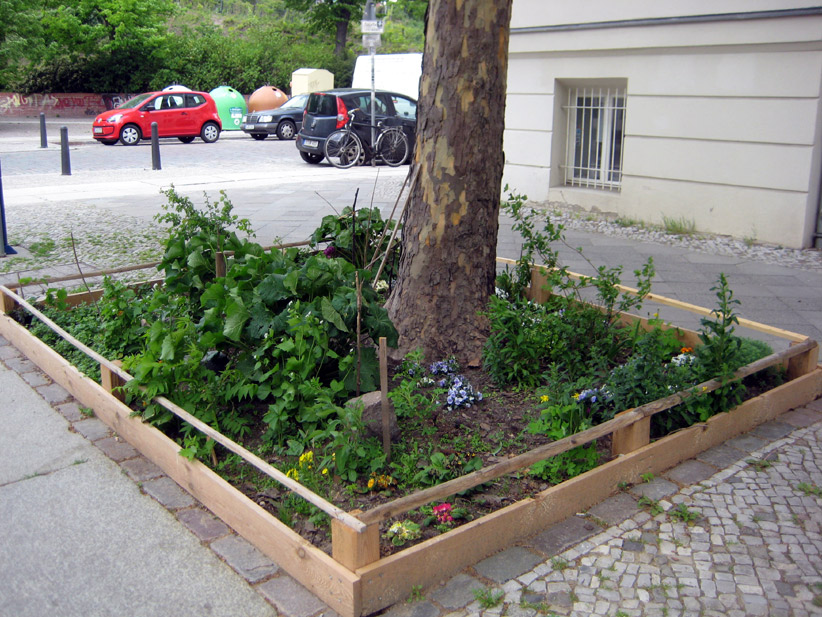 guerilla gardening bepflanzte baumscheiben mygreentown urban gardening blog. Black Bedroom Furniture Sets. Home Design Ideas