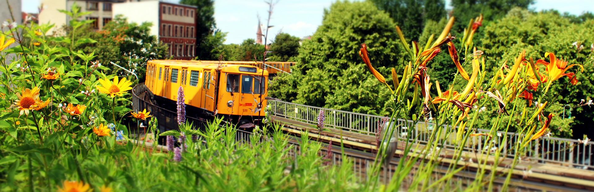 urban-gardening-slider09